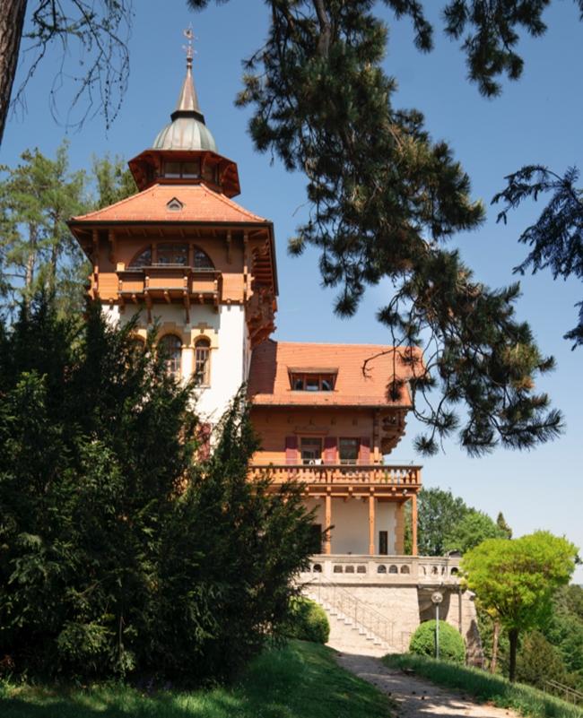 Die 1901 erbaute Villa Waldberta mit alten Nadelbäumen im Vordergrund